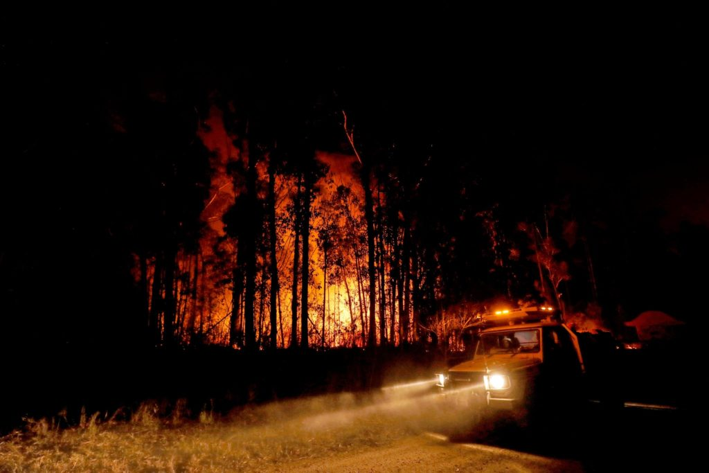 Forest on  fire, January 2, 2020 in country Victoria, Australia. Photo credit: Traynor/Getty Images.