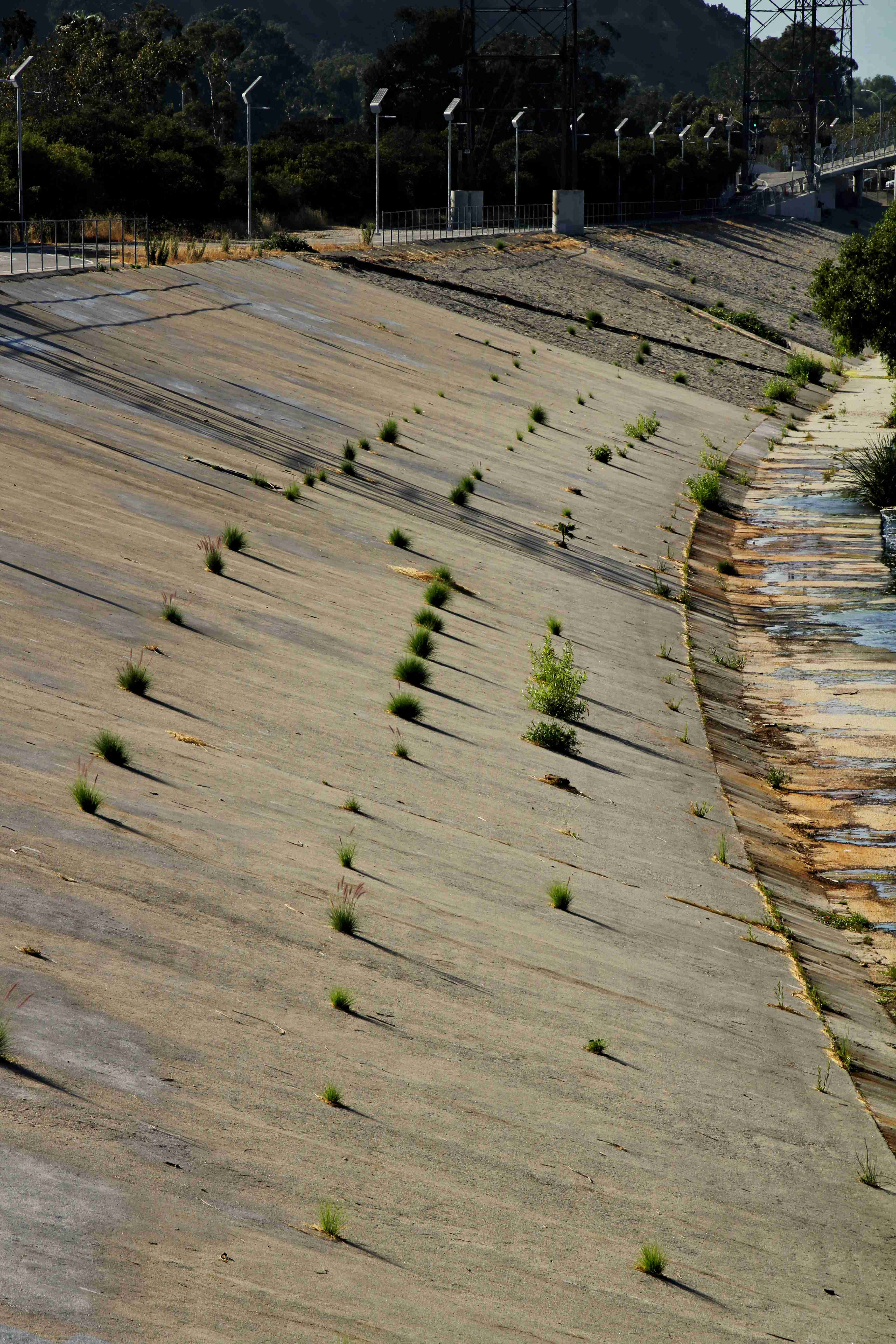concrete trapezoidal river bank with plants growing in cracks
